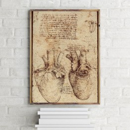 Leonardo Da Vinci'nin Kalbin Anatomisi - Poster