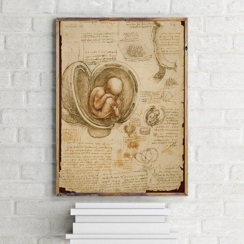 Leonardo da Vinci'nin Fetüs deseni