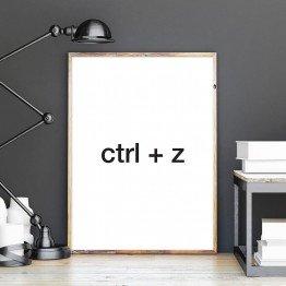 Ctrl+z - Poster