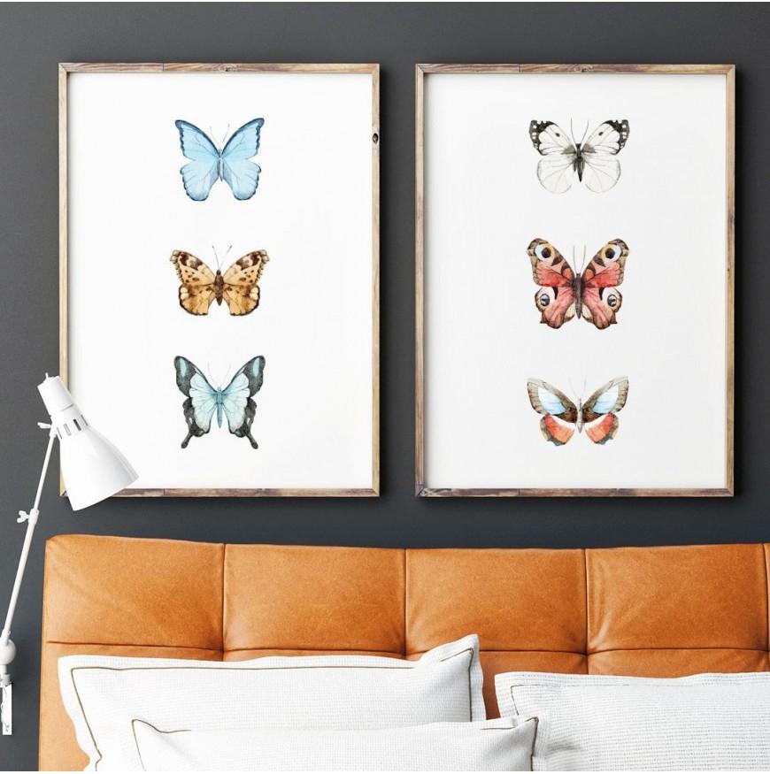 Renkli Kelebekler İllüstrasyon - İkili Poster