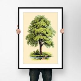 Vintage Ağaç